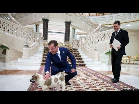 Страна Дмитрия Медведева