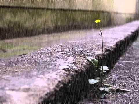 Free download Mp3 hujan pun menangis online