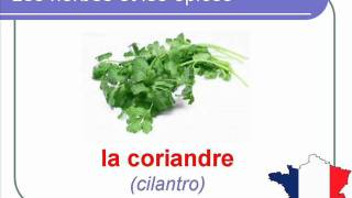 French Lesson 29 - Condiments Herbs and Spices FOOD VOCABULARY - HERBES ET ÉPICES Hierbas y especias