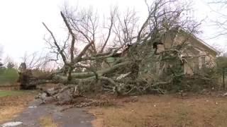 خسائر جسيمة وعشرات الضحايا بعاصفة ثلجية في الولايات الأميركي