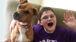 Autistic Boy And Rescue Dog Are BFFs | XENA THE WARRIOR PUPPY | Love Nature