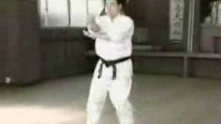 Count down of Kyokushin Karate top 10 legends from 3 to 1.