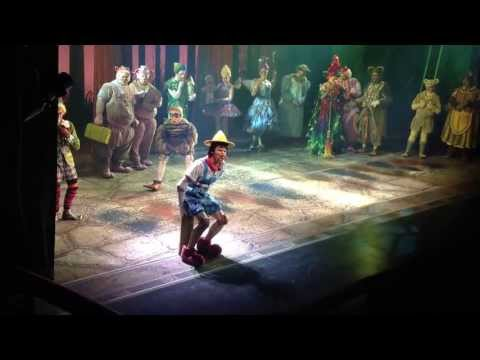 Freak Flag - Shrek The Musical National Tour 2012-2013, Tony Johnson as Pinocchio