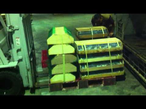 Raja Fauna Process handling shipment bird import