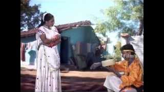 Tor Saap La Dekha Na  - Bambaiwali -Chhattisgarhi Hot Stage Show -  Sanjeevan Tandiya