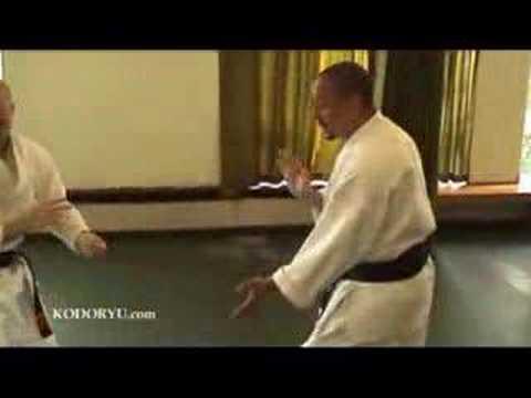 Ko-do Ryu Pushing Hands