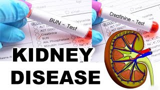 WHAT IS CREATININE, BUN, AND GFR!! KIDNEY TERMINOLOGY! DEALING WITH KIDNEY DISEASE!