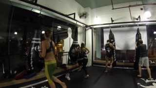 muay thai beginners classes @ Monarchy MMA