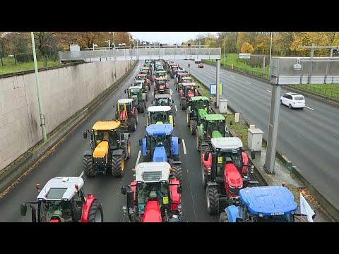 """Agrarprotest In Frankreich: """"Wir Haben Täglich 2 Suizide Von Bauern"""""""