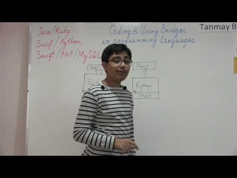 Implementing & Using bridges between Programming Languages