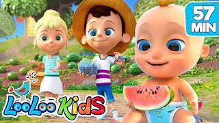 Gambar cover Down By the bay -  THE BEST Songs for Children | LooLoo Kids