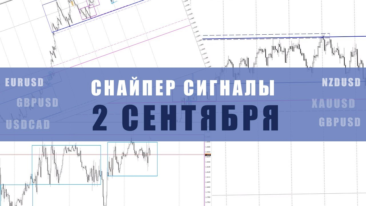 СИГНАЛЫ СНАЙПЕР НА 2 СЕНТЯБРЯ | Трейдер Максим Михайлов