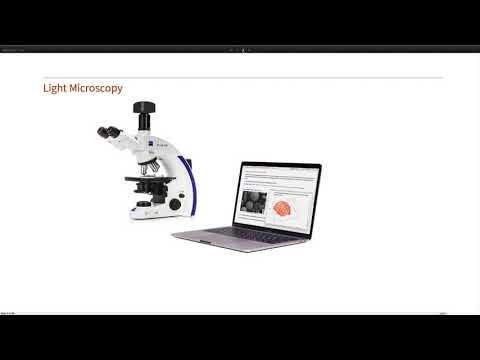 Computational Microscopy: Utilizing Image Processing and Neural Networks