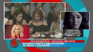Ana Rosenfeld explicó por qué dejó de representar legalmente a Juan Darthés