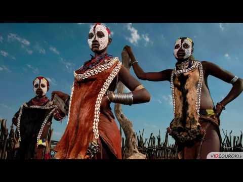 Видеоурок «Африка. Географическое положение и история исследования»