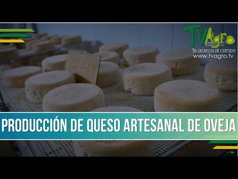 Como Producir Queso Artesanal de Oveja - TvAgro por Juan Gonzalo Angel