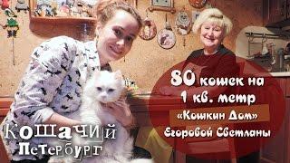 """Выпуск №076 """"80 кошек на 1 кв.метр. Кошачий Петербург."""""""