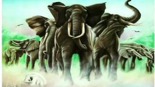 Elvis Costello & The Attractions - Green Shirt (best audio)