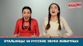 Download Итальянцы угадывают русские звуки животных Mp3 and Videos