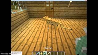Minecraft-cat training