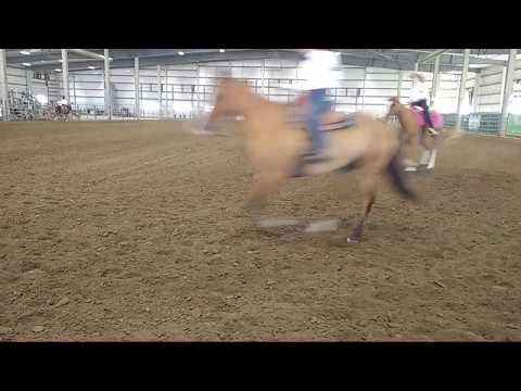 2018 Lancaster County Super Fair - 4-H Western Horse Show 3