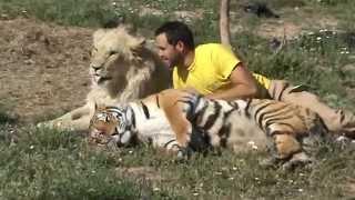 yo,un tigre y un leon