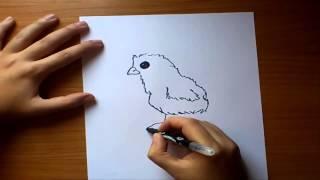 Como dibujar un pollito paso a paso | How to draw a chick