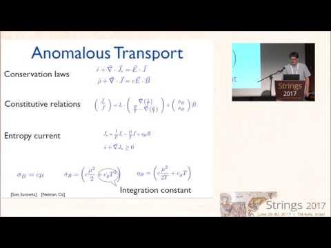 1130 1200  Karl Landsteiner   Anomalous Transport from Anti de sitter Space to Weyl Semimetais