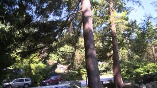 Realty Reality Episode 5, West Vancouver