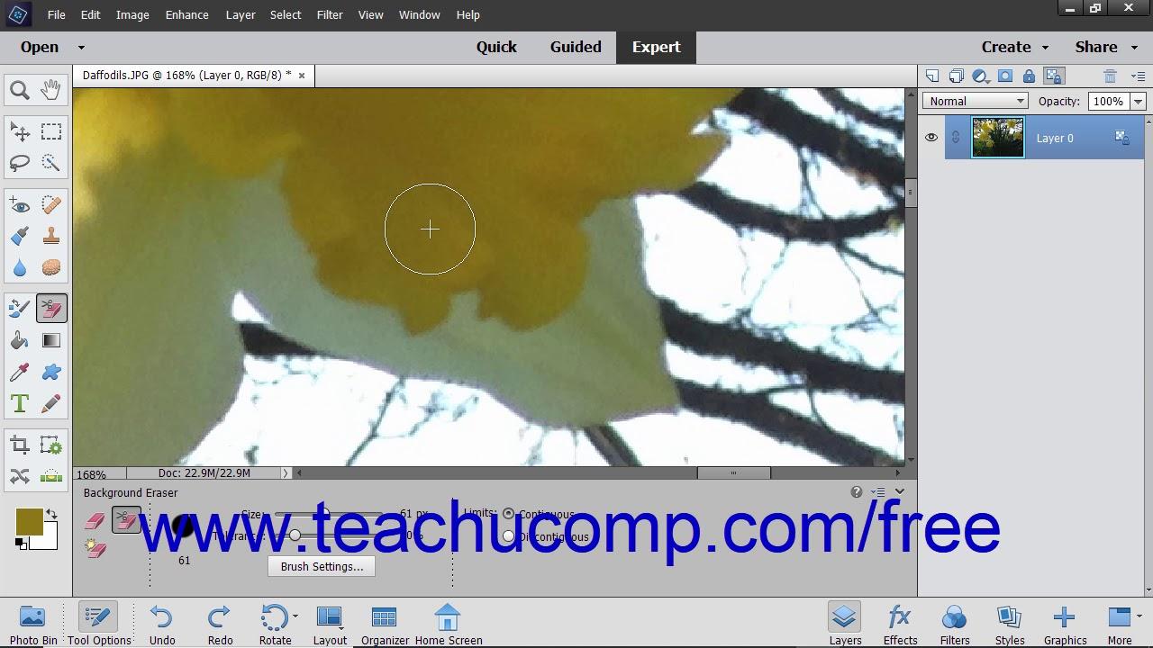 Adobe photoshop background elements