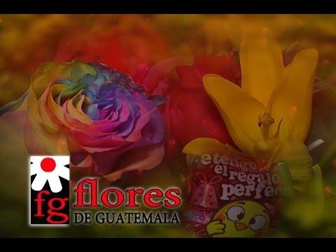 Mi Pais TV FLORES DE GUATEMALA DOMINGO 7 Febrero 2016