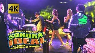 Sonora Ideal - Concierto 20 Años De Historia 4K