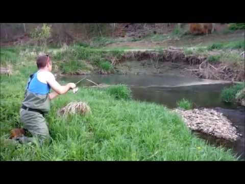 Driftless Area Trout Fishing