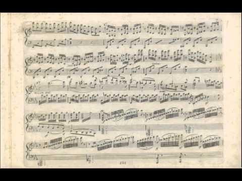 Beethoven-String Quartet C# minor,Op.131-Adagio ma non troppo,Allegro vivace,Allegro moderato