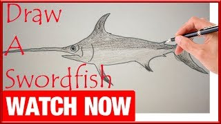 How To Draw The Swordfish - Learn To Draw - Art Space