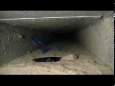 Amistee Duct Cleaning Video