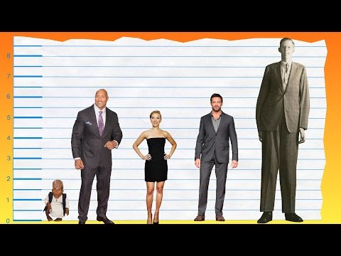 How Tall Is Dwayne