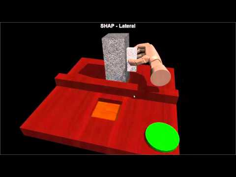 Dexterous Hand Manipulation in Virtual Reality
