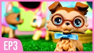 LPS Outsiders Musical Episode 3 She Will Never Know Littlest Pet Shop Series