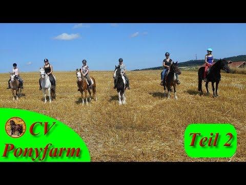 15 Jahre CV Ponyfarm Jubiläum - Teil 2