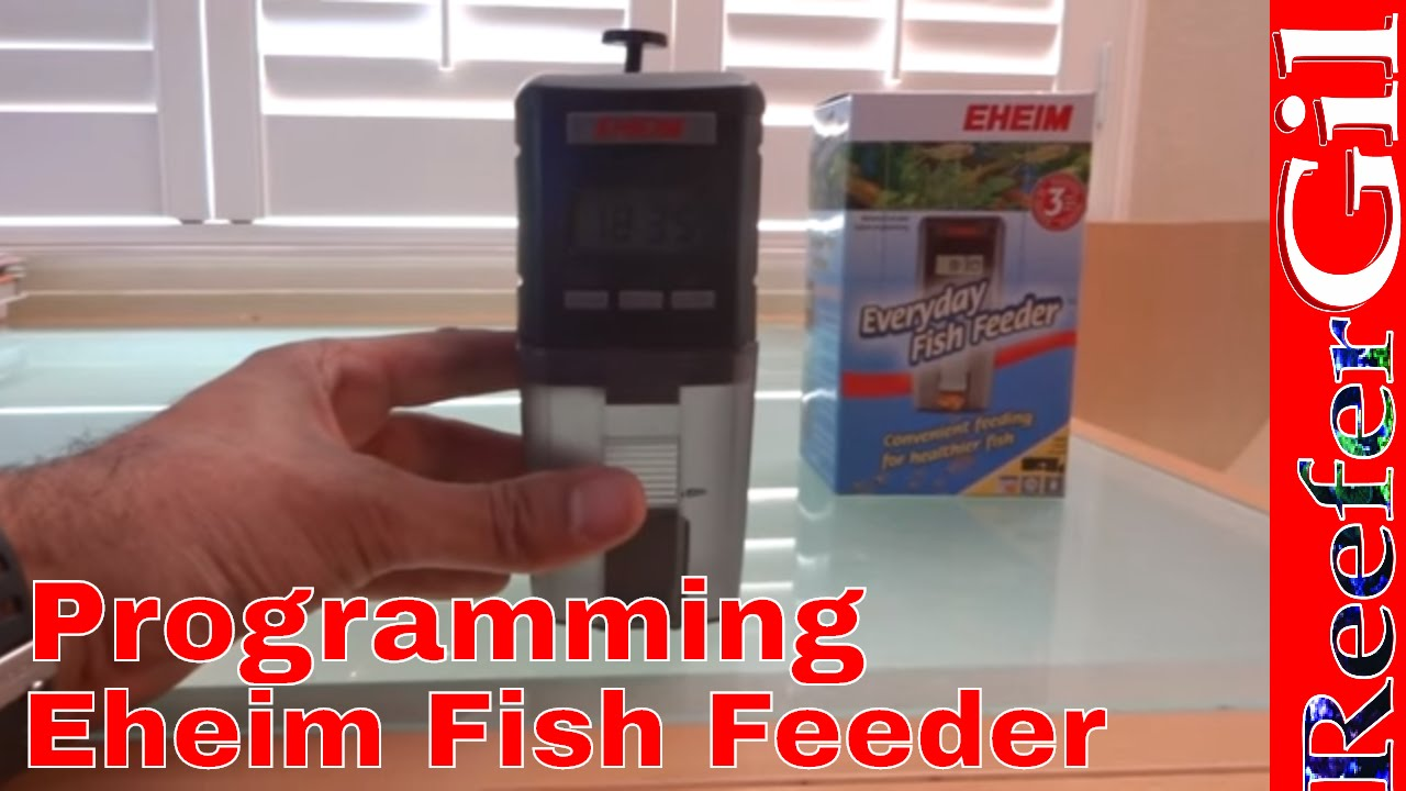 automatic food juwel aquarium fish feeder feeders eheim