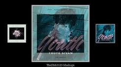 Zedd, Maren Morris & Grey vs Troye Sivan - The YOUTH (Mashup)