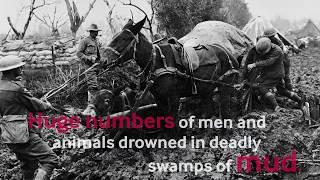 Passchendaele, The Third Battle of Ypres
