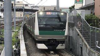 相鉄線 特急 海老名行き 西谷駅(JR E233系7000番台ハエ104編成)