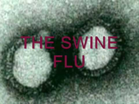 the swine flu epidemic 2010 Currently, there has been an international concern and fear about the disease the swine or swine flu the main question that all the experts were worried about was whether the swine flu is an epidemic or a pandemic.
