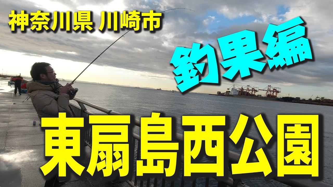 東扇島 西 公園 釣果