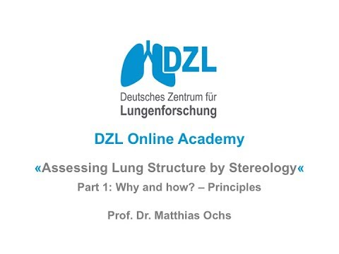 Assessing lung structure by stereology - Part 1: Why and how? - Principles