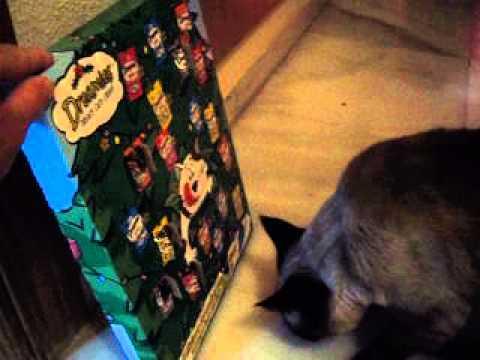 Dreamies Advent Calendar For Cats
