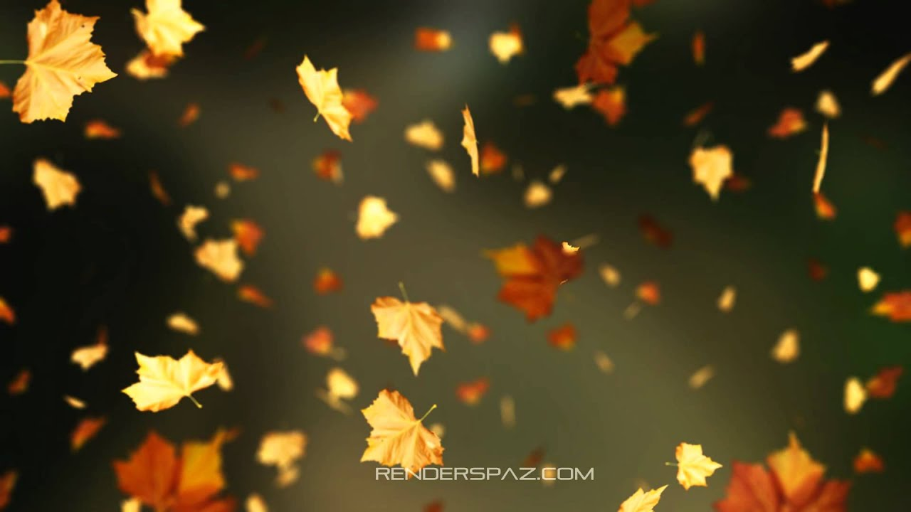 Fall Leaves Animated Wallpaper