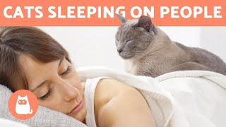 Why Does My CAT SLEEP on TOP of ME?  Is It SAFE?